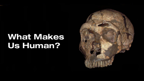 what makes us humans essay